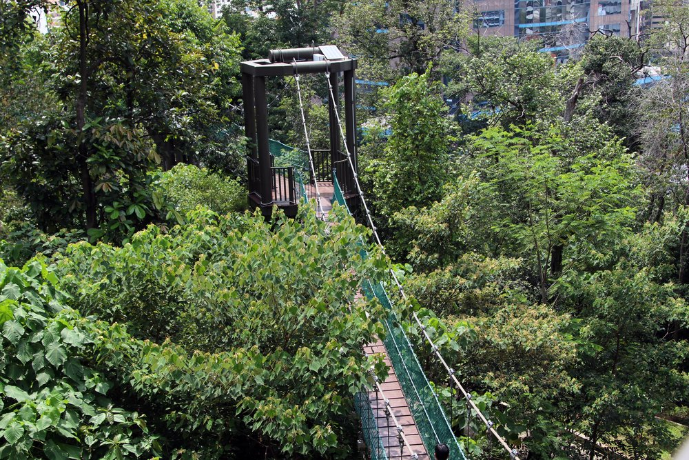 Forest Eco Park Bukit Nana - kuala lumpur itinerary for 3 days. 0 Shares. Canopy walk ... & Things to Do in Kuala Lumpur in 3 Days - Arzo Travels