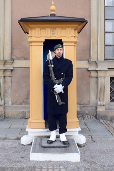 Royal Palace - Royal Guard