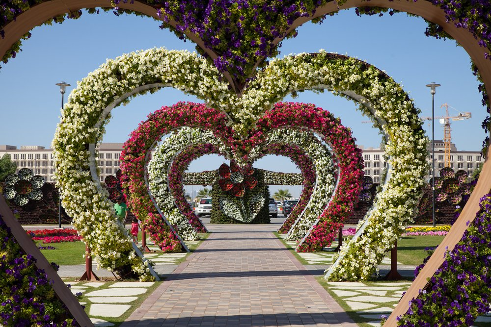 Miracle Garden @shutterstock