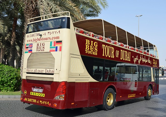 Review: Dubai Hop On Hop Off Tour by Big Bus Tours