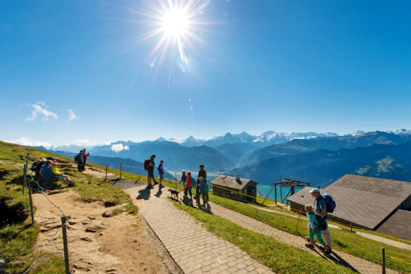 A Day at Niederhorn Including Lunch at Berghaus Niederhorn - picture by Interlaken Tourism office