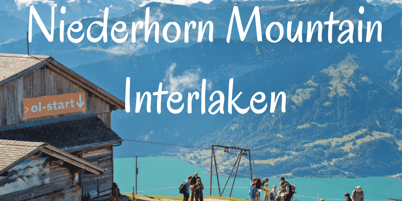 A Day Trip to Niederhorn Mountain in Switzerland