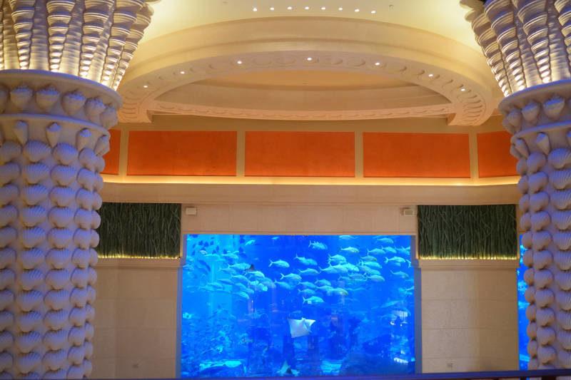 Atlantis - The Palm Dubai