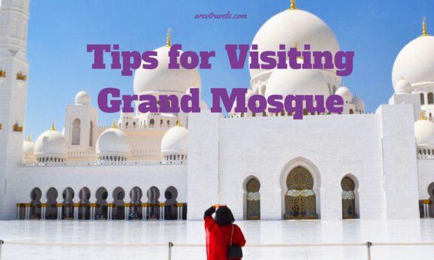 Travel Highlight: Sheikh Zayed Grand Mosque in Abu Dhabi