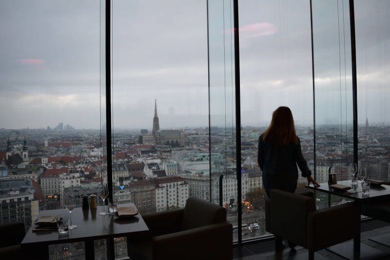 Beat View of Vienna at Loft Sofitel