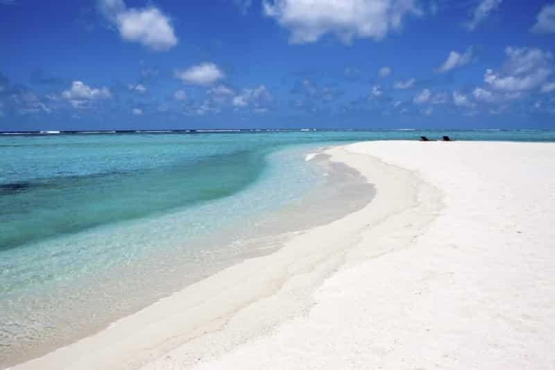 Saadiyat Island @shutterstock