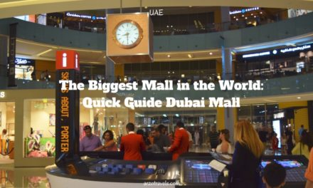 Dubai Mall Quick Guide
