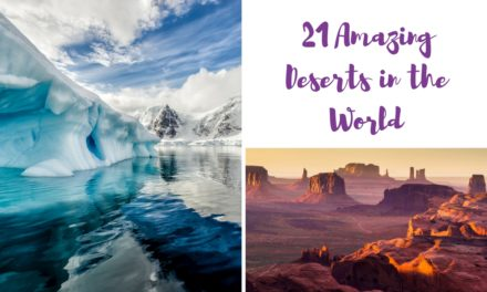 21 Best Deserts in the World