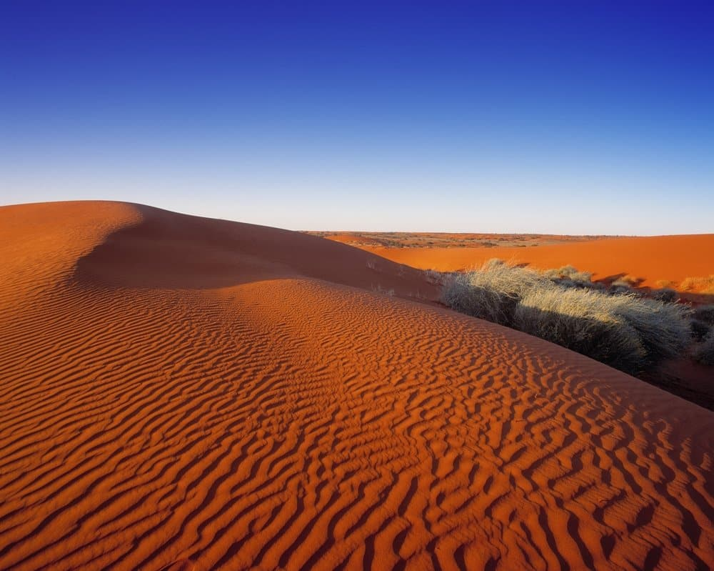 Sand Dunes, Simpson desert