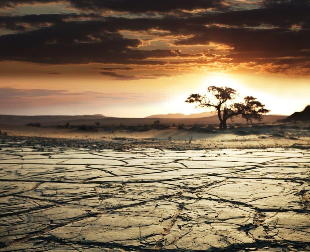 Gobi desert @shuttersock in China and Mongolia