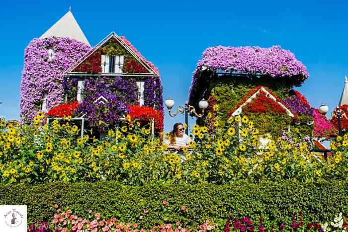 Arzo Travels Miracle Garden Dubai