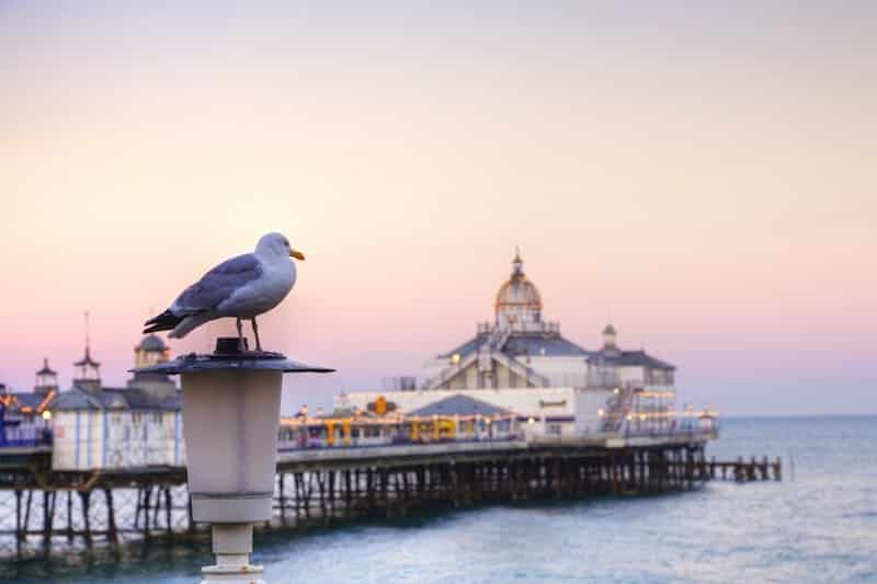 Eastbourne in UK, a gorgeous pier and promenade