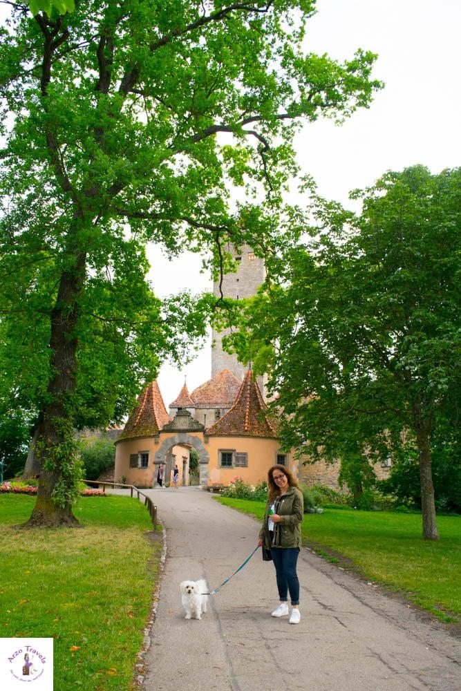 Strolling through Burggarten with Puppygak