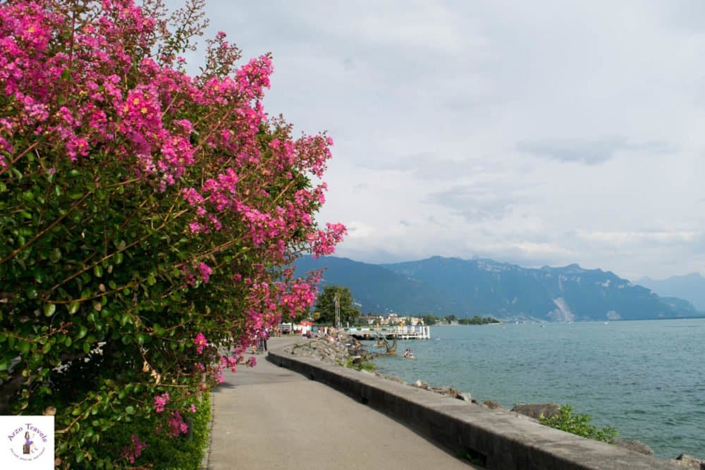 Things to do in Vevey-Walking along the promenade