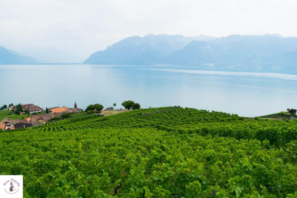 Vineyards of Montreux - where to go in Switzerland