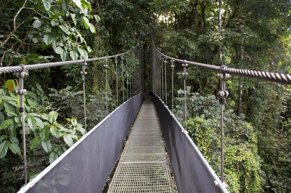 Suspension and hanging bridges in Costa Rica