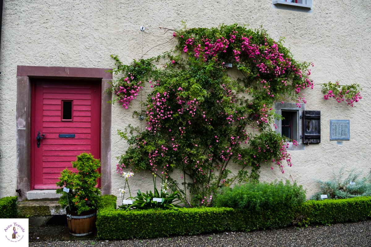 Pretty pink doors and facades in Schaffhausen