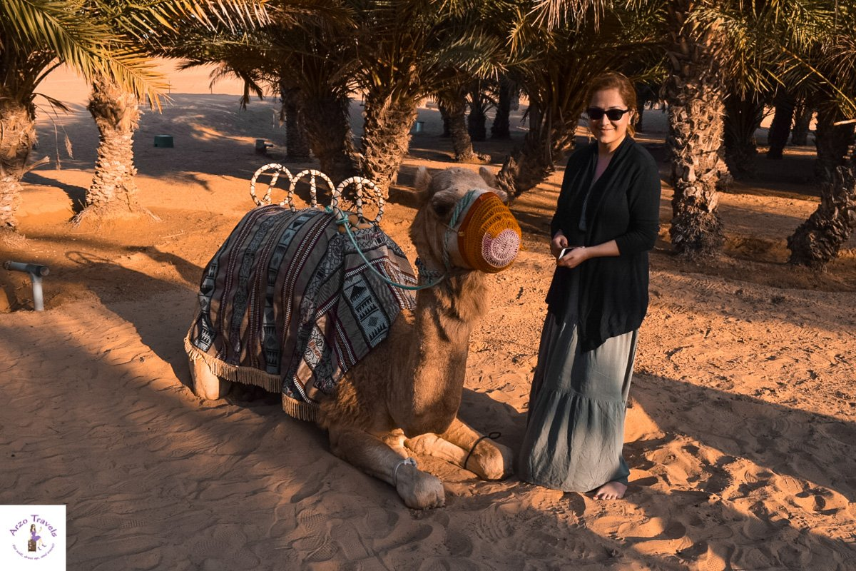Petting the Camels at the Dubai Desert Safari