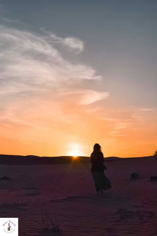 The Girl in the Desert Arzo Travels