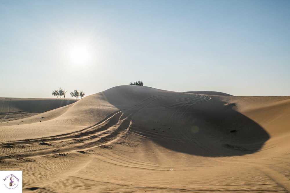 Desert safari in the UAE