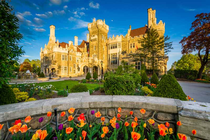 Tulips and Casa Loma in Midtown Toronto, Ontario