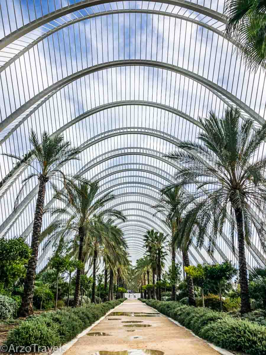 What to do in Valencia in one day