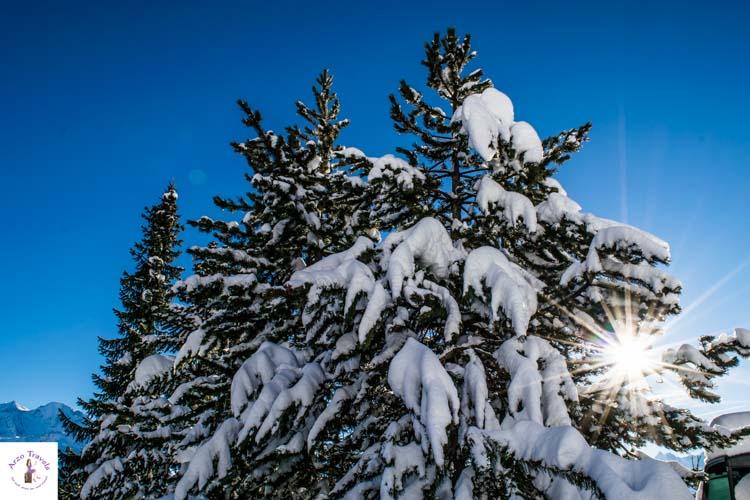 Switzerland in the winter, best winter photos of switzerland