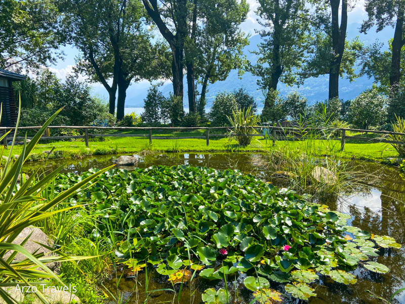 Camellia Park - Parco delle Camelie in Locarno