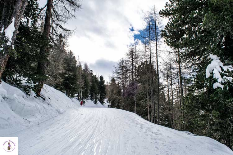 Things to do in Grächen in the winter, snowshoe hiking