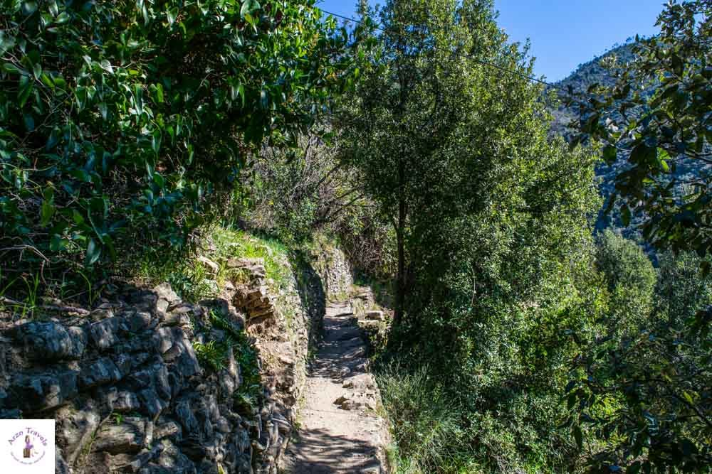 Cinque Terre hiking in 1 day Monterosso