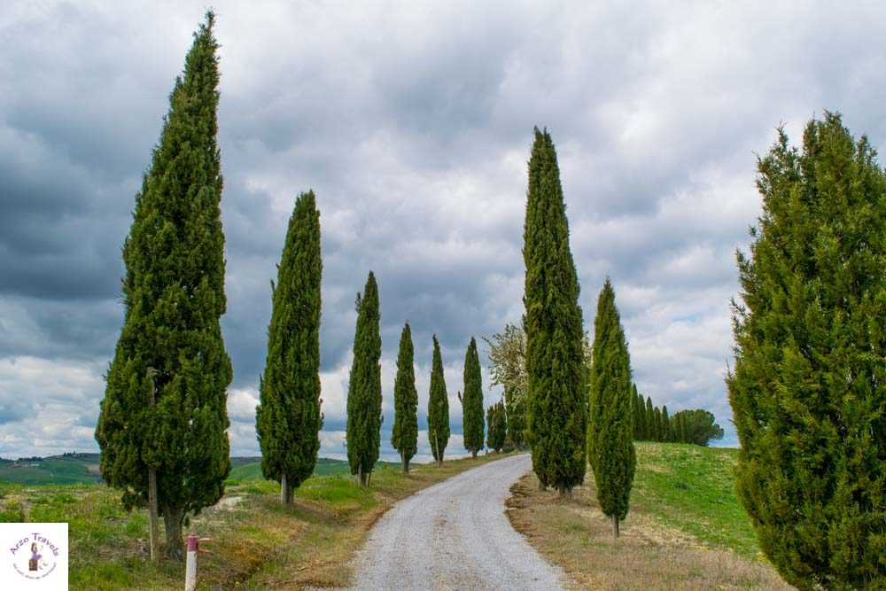 Tuscany, driving in Tuscany, typical road