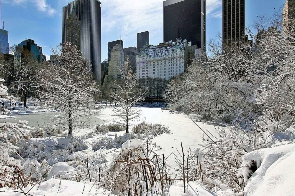 New York in winter with snow