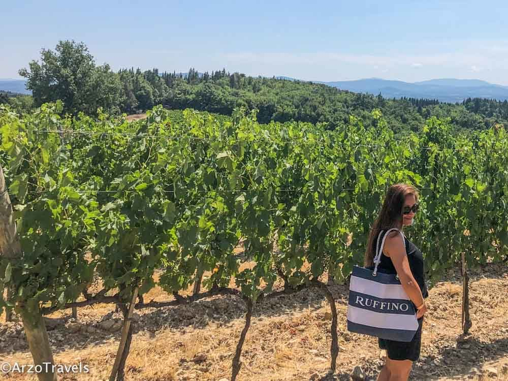Vineyeards from Ruffinio in Tuscany estate with Arzo Travels