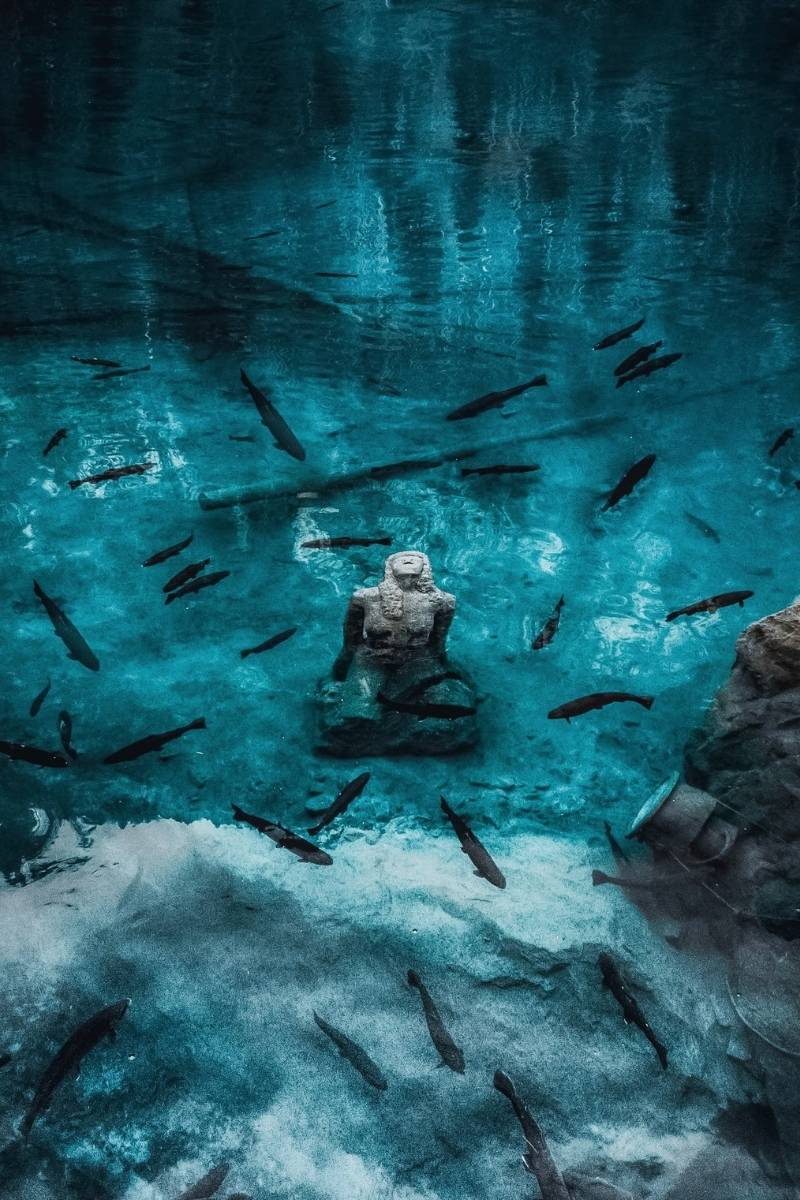 Diving at Lake Blausee with permission