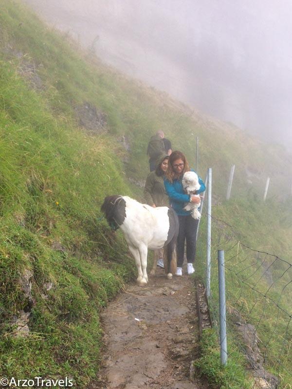 Hiking at Ebenalp Mountain in the fog, Switzerland
