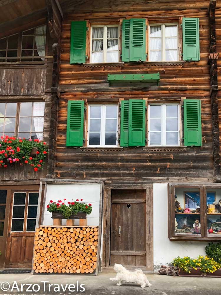 Puppygak in Iseltwald in Switzerland